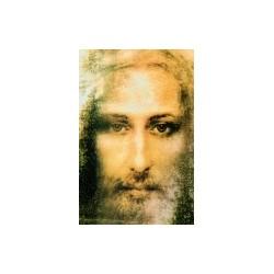 Das Evangelium der Pistis...